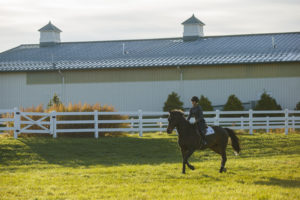 Equine Open House